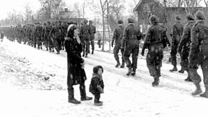 Liberation of Finnmark - Free Norwegian Forces march through Bjørnevatn in November 1944.