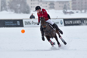 image of 30th St. Moritz Polo World Cup on Snow - 20140202 - Cartier vs Ralph Lauren 9