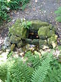 435 Fontaine du Stang Bois de Roscouré.JPG