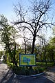 65-103-5001 парк Гола Пристань.jpg