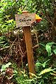 Açores 2010-07-20 (5071935213).jpg