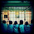 A-POIS Giuditta Nelli - Senegal 2012 - Dakar, Parc Hann, A caged lion in the country of the Lion 1.JPG