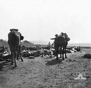 A dismounted soldier with rifle slung standing near a grave site. Two horses stand in the foreground