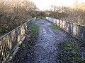 A Lost Bridge across the Luggie - geograph.org.uk - 1573543.jpg