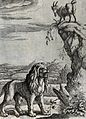 A lion is standing roaring under a mountain crag on which a Wellcome V0022977.jpg