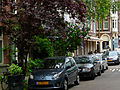 A picture in spring of trees and houses in the Plantage Muidergracht in Amsterdam; high resolution image by FotoDutch in June 2013.jpg