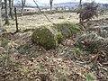 A roadside boulder - geograph.org.uk - 1181453.jpg