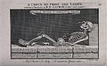 A skeleton with snakes and rats. Etching by C. Grignion, 182 Wellcome V0042156.jpg