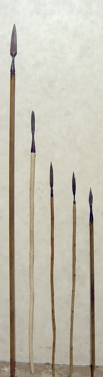 Spear - Modern reproductions of a medieval European spear and a series of javelins. The heads are hand forged steel, the shafts are made from ash wood.