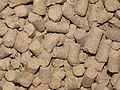 A view of cattle feed.JPG