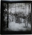 A wintery Tarvaspää pictured from the east in the 1910s. (27323400083).jpg