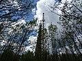 Abandoned Soviet Over-the-Horizon Radar Array - Chernobyl Exclusion Zone - Northern Ukraine - 02 (27066596416).jpg