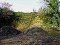 Abandoned quarry at Lady's Cross, Camrose - geograph.org.uk - 1010144.jpg