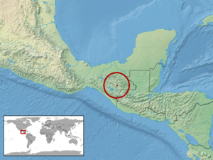 Abronia leurolepis - Image: Abronia leurolepis distribution