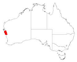 Acacia sphenophyllaDistMap837.png