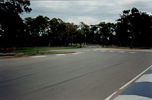 Adelaide Street Circuit - Senna Chicane viewed from Pit Straight