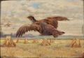 Adolphe Thomasse - Flyvende agerhøns.png