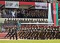 Afghan Victory Day 2010.jpg