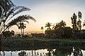 Al Maqrabeyah, Qus, Qena Governorate, Egypt - panoramio (2).jpg