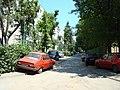 Aleea Dorohoi (Marti, 10 iunie 2008) - panoramio.jpg