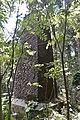 Allan Cunningham Monument 2017 004.JPG