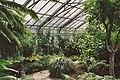 Allan Gardens July 2005 02.jpg