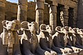 Alley of sphinxes.jpg