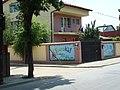 Alunisului-Bacia (27 mai 2008) - panoramio.jpg