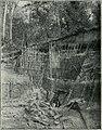 Am Tendaguru - Leben und Wirken einer deutschen Forschungsexpedition zur Ausgrabung vorweltlicher Riesensaurier in Deutsch-Ostafrika (1912) (18165243375).jpg