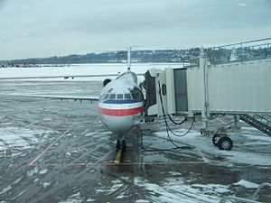 English: An American Airlines plane at the C C...