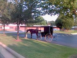 Amish buggy in a village parking lot