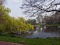 Amsterdam Noord 04 2014 - panoramio (7).jpg