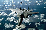 An air-to-air front view of an F-15E Strike Eagle aircraft of the 336th Tactical Fighter Squadron DF-ST-90-01608.jpg
