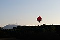 Angry Bird hot air balloon over Canberra 3.JPG