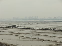 Dongshi skyline seen from across the Anhai Bay