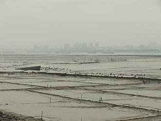 Dongshi, Fujian - Dongshi skyline seen from across the Anhai Bay