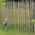 Antoon Versteegde Bamboo Pavillion Sonsbeek MMKA.jpg