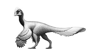 Anzu (dinosaur) - Life restoration