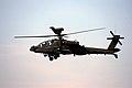 Apache (2560716175).jpg
