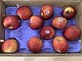 Apples in Box.jpg