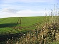 Arable field near Holefield - geograph.org.uk - 281337.jpg