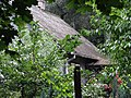 Arkadia - dom Jana, syna Marii Konopnickiej.JPG