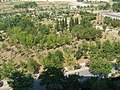 Ataköy7.8.kısım manzara yeşillik www.truvaemlak.net - panoramio.jpg