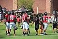 Atl Falcons training camp July 2016 IMG 7772.jpg