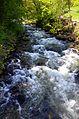 Aubonne (rivière).JPG