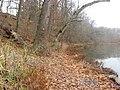 Auglaize riverbank at Fort Amanda.jpg