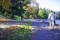 Autumn, Stanley Park Oct, 2015 - 21768480429.jpg
