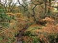 Autumn Burn - geograph.org.uk - 613399.jpg