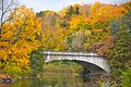 Autumn Foliage in Duke Farms, Hillsborough, New Jersey 11.jpg
