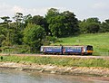 Avocet Line 142068 near Lympstone.jpg